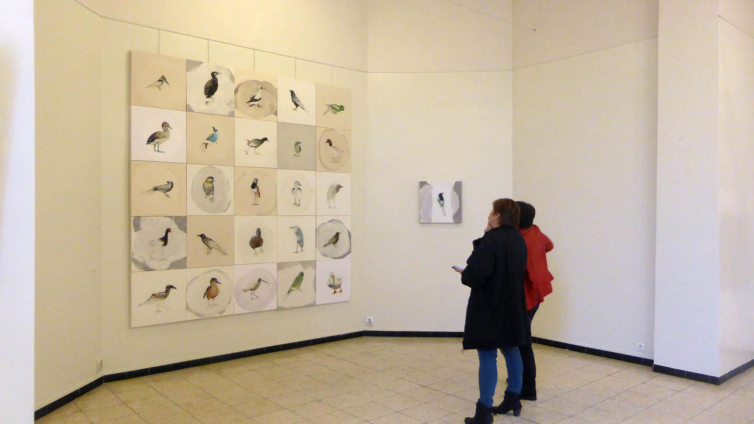 Exposition les oiseaux jean paul matifat mairie de for Horaire piscine la ferte sous jouarre